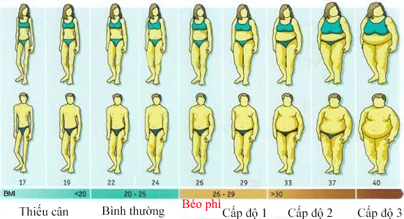 Phương pháp BMI (chỉ số Quetelet)